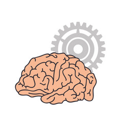 Human brain intelligence vector