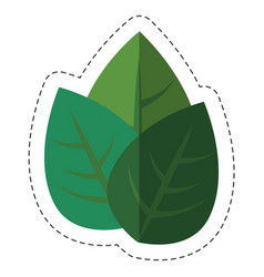 Green plant design vector