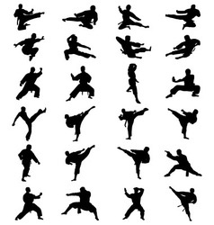 karate fighting vector image vector image