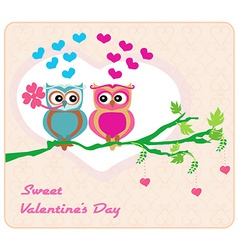 owls in love sweet card design vector image