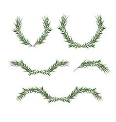 Decorative element set eucalyptus round green vector