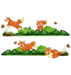 Foxes resting in the field vector image vector image