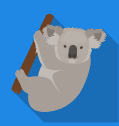 Kuala marsupial bear on a branch of eucalyptus vector