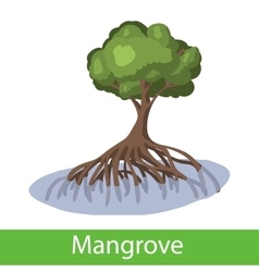Mangrove cartoon tree vector