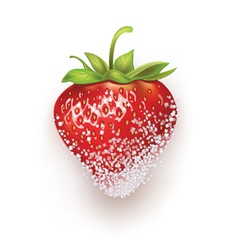 Strawberries in sugar vector