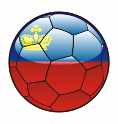 liechtenstein flag on soccer ball vector image