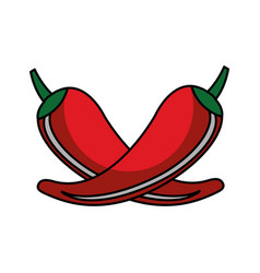 chilli pepper isolated icon vector image