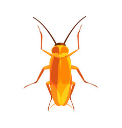 cockroach insect colorful cartoon character vector image vector image