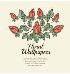 floral wallpapers design isolated vector image