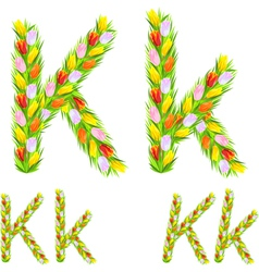 Letter k made from flower tulip vector