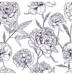 beautiful peonies seamless pattern hand drawn vector image vector image