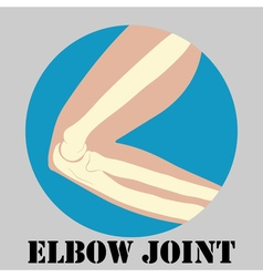 Human elbow joint vector image