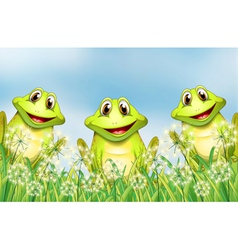 Three happy frogs in the garden vector image vector image