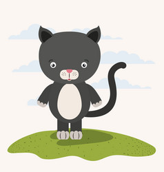 White background with color scene cute cat animal vector