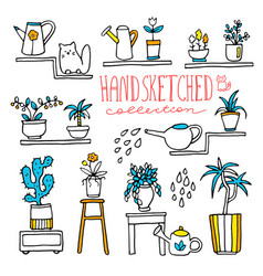 Hand drawn houseplants and flowers vector