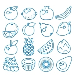 Fruits Set of line icons vector image vector image