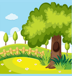 nature scene with trees in the field vector image vector image
