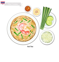 Pad Thai or Thai Stir Fried Noodles with Shrimps vector image