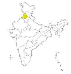 Punjab vector