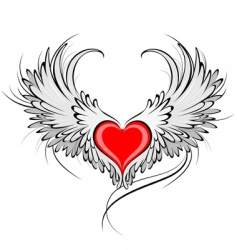 Red heart of an angel vector