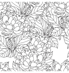 Seamless Peony bouquet Coloring book page vector image vector image