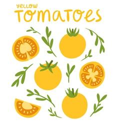 Yellow tomatoes vector image
