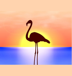 silhouette flamingo on a background sunset vector image