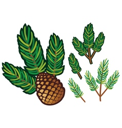 Branch of pine and pine cone vector
