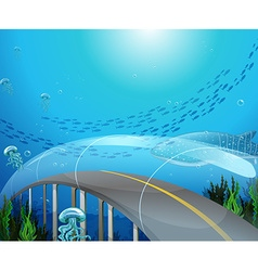 Glass tunnel under the ocean vector