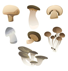 mix mushroom vector image