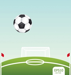 soccer ball on stadium vector image