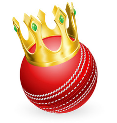 king of cricket vector image