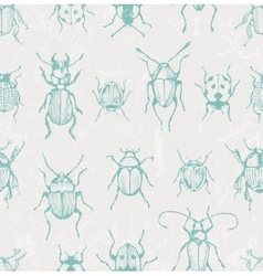 Seamless entomological pattern with bugs vector