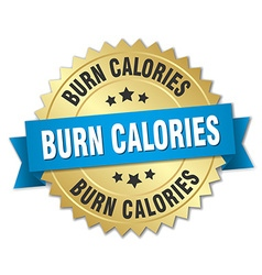 Burn calories 3d gold badge with blue ribbon vector