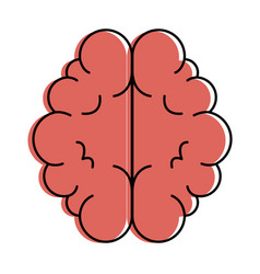 brain organ isolated icon vector image
