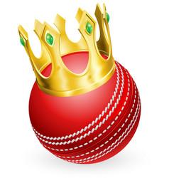 King of cricket vector