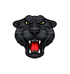 Panther roaring head muzzle mascot icon vector
