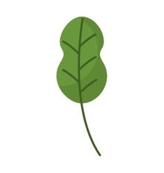Leafs plant vegetarian food vector