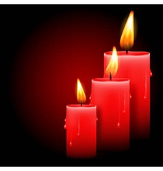 Candles vector
