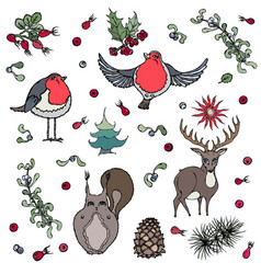 Christmas background deer squirrel red robin vector