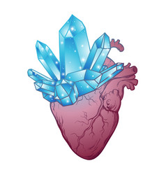 Crystals growing from human heart isolated vector