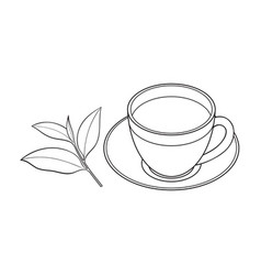 glass cup saucer and fresh tea leaf vector image vector image