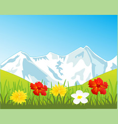 Snow mountains and glade with flower vector