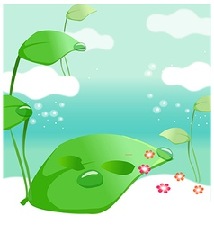 Waterdrop on leaves vector