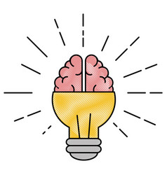 Light bulb brain idea vector