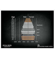2016-2020 population pyramids graphs vector
