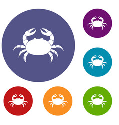 Raw crab icons set vector