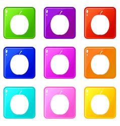 Fresh apricot icons 9 set vector