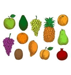 Tropical and exotic fruits isolated icons vector image