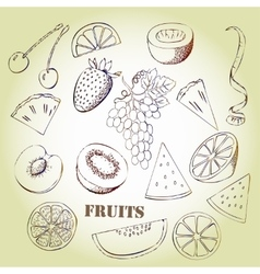 Background with fruit vector image vector image